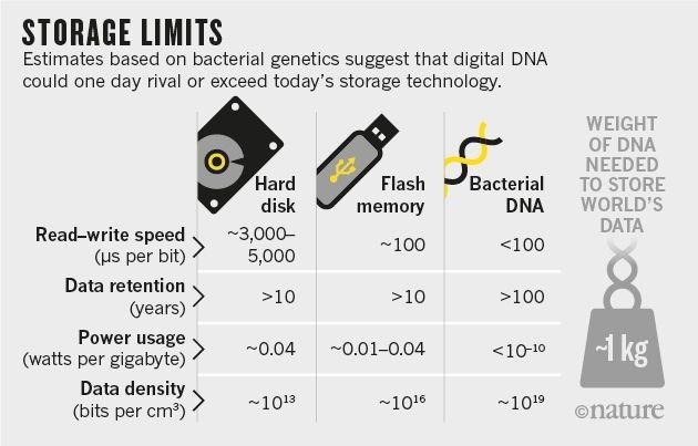 DNA_storage_graphic_WEB_2.jpg