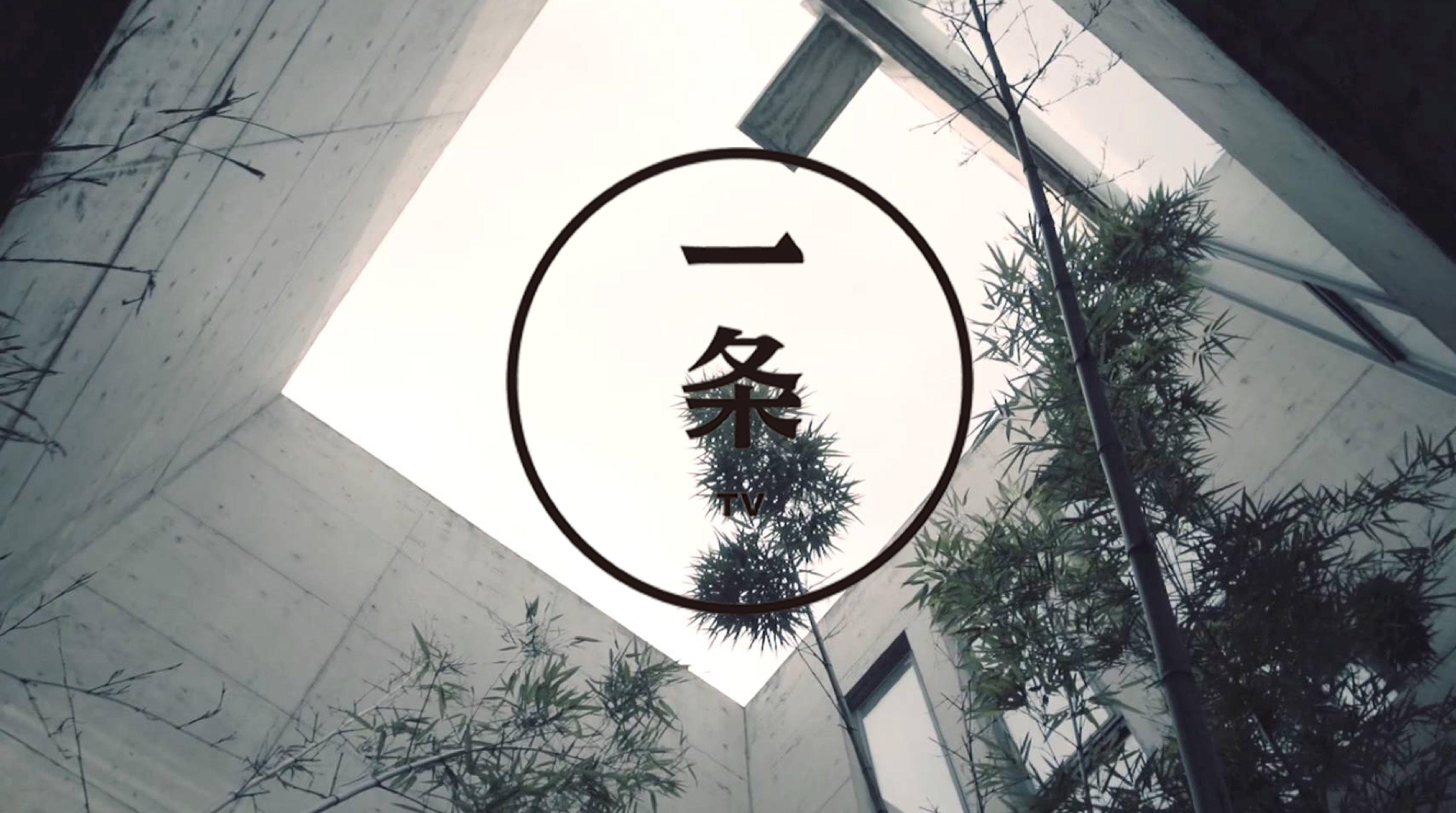 一条徐沪生:规模才是一切,没规模,再美也没人鸟你