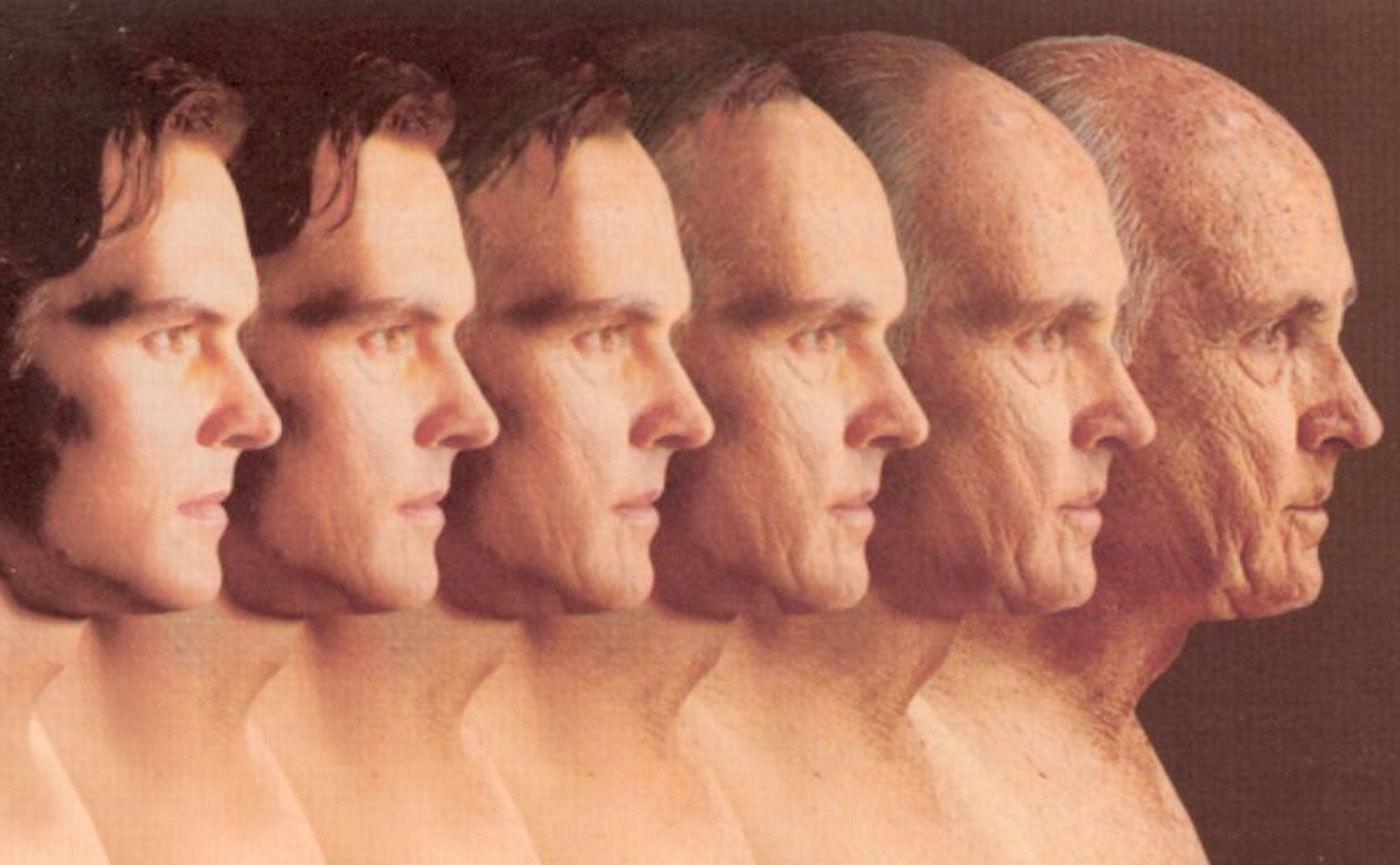 Google 也像秦始皇一样追求长生不老,它是怎么「炼仙丹」的?