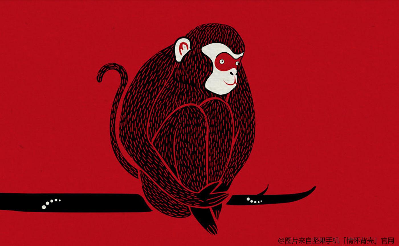 准备好为这些「猴年喜庆独家限量红色版」硬件买单了吗?