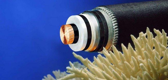 谷歌 3 亿建美亚海底高速光缆 | 极客早知道 2014 年 8 月 12 日