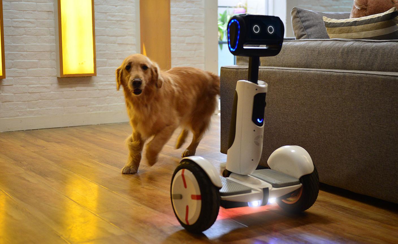 Segway、小米、英特尔,这 3 个「爸爸」打造的机器人究竟能干什么?