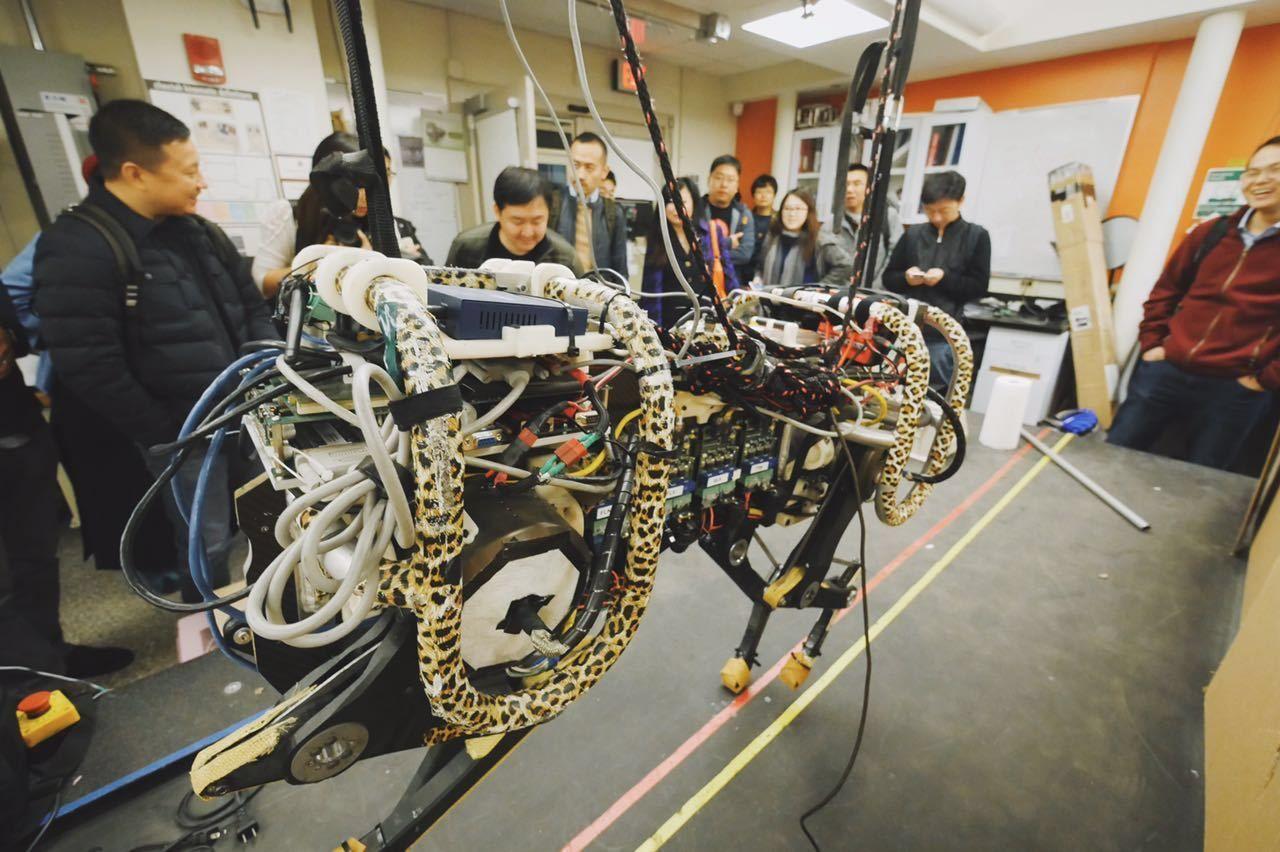 探秘 MIT Cheetah:这可能是全世界奔跑速度最快的机器人